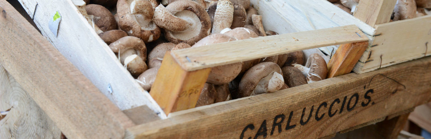 Mad About Mushrooms! Carluccio's Mushroom Market Returns To Hampstead Hero Image