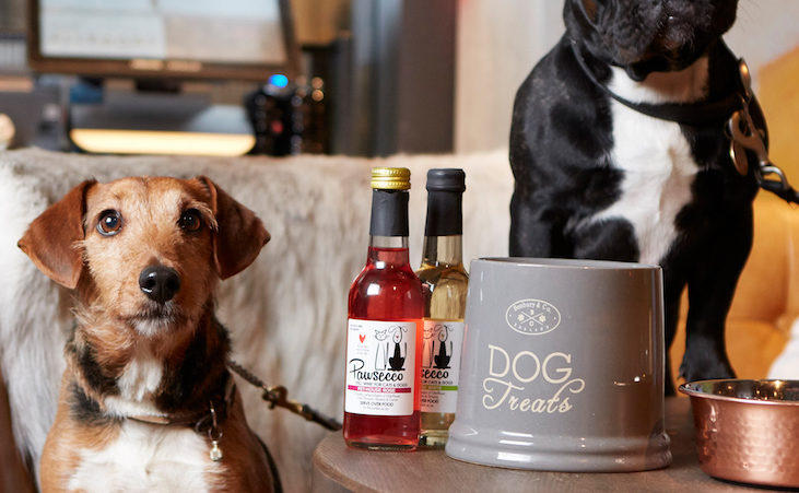Drake & Morgan: The Paw-fect Drinking Destination for your Four-legged Friend Hero Image