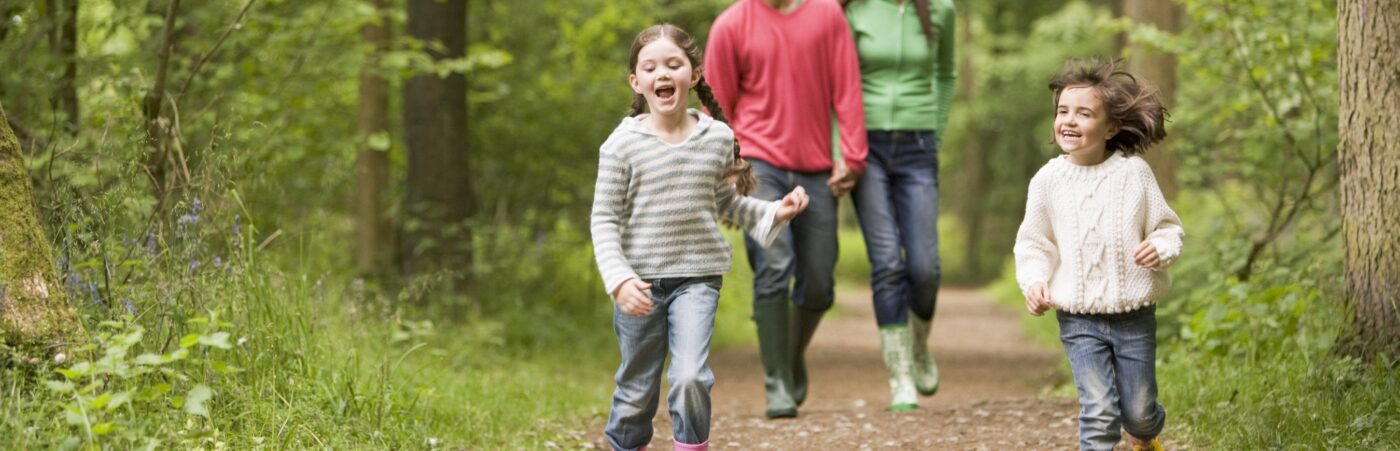 Into The Wild: Enjoy A Half Term With A Difference at Down Hall Hero Image